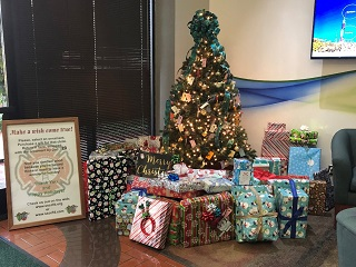 Make a Wish Come True Holiday Toy Drive