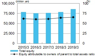 Total Equity
