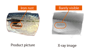 Fig.3.2: Iron rust being inspected by X-ray
