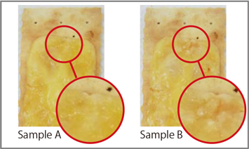Fig. 3-2: Difference of appearance
