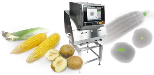農産物の形状検査とランク選別
