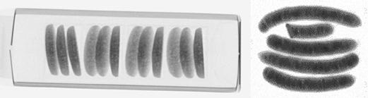 クッキーおよびソーセージのX線検査画像