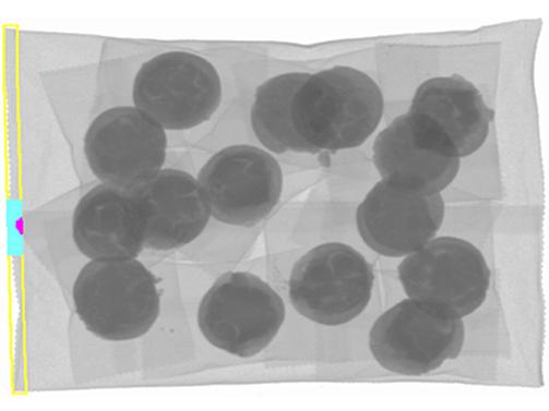 大袋商品のかみこみ検査のX線イメージ