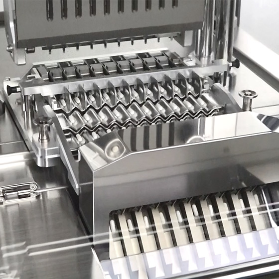 Capsule Checkweigher