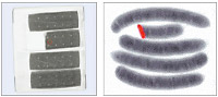 形状検査 - Shape Detection