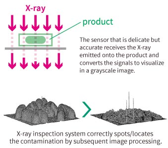 X-ray inspection system correctly spots/locates the contamination by subsequent image processing.