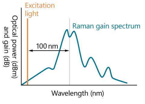 Stimulated Raman Scattering Spectrum of Optical Fiber