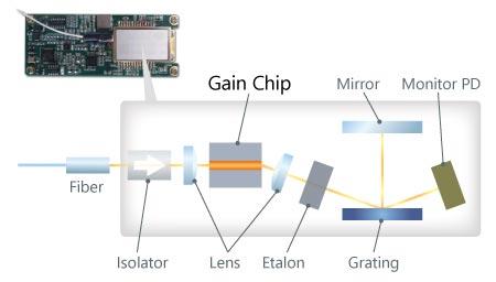 ITLA internal structure schematic