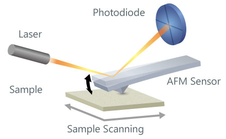 Atomic Force Microscope Sensor