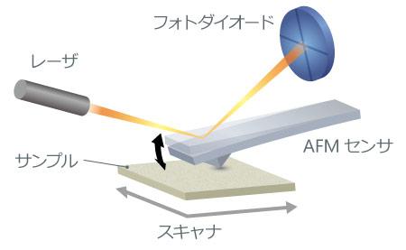 原子間力顕微鏡のセンサ部