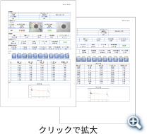 PDFレポート例